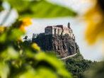 Sonnenblumen Riegersburg - derferder.at